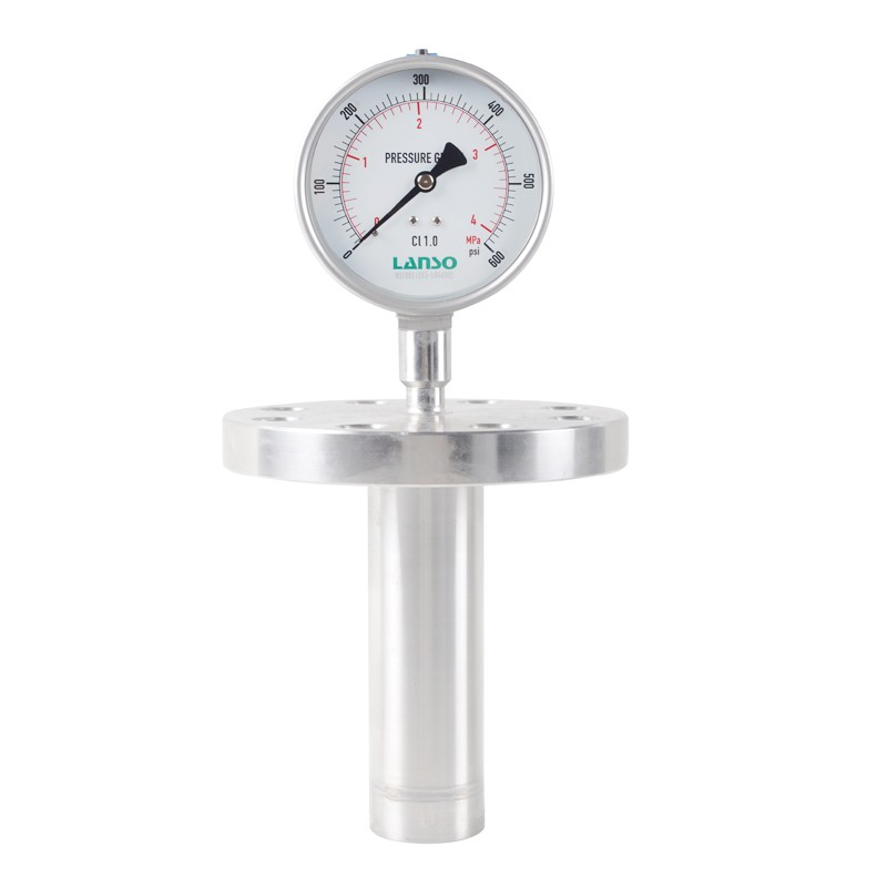 B32.ST+DS29 Flange Diaphragm Pressure Gauge - Insertion