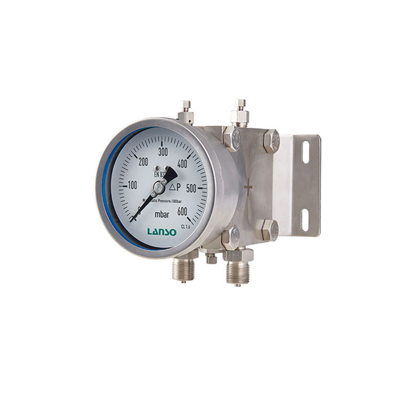Dual Diaphragm Differential Pressure Gauges