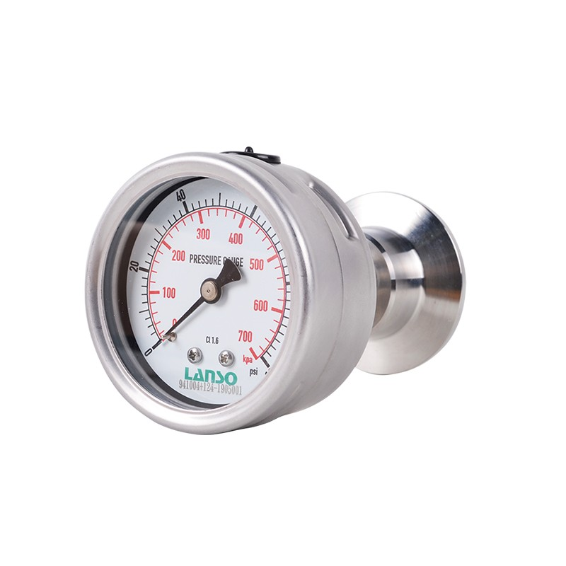 B32.ST+DS22 Flange Diaphragm Pressure Gauge - Clamped Connection