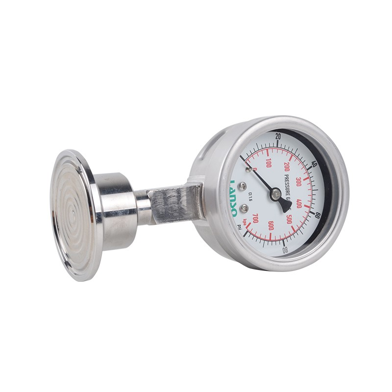 B32.ST+DS22 Flange Diaphragm Pressure Gauge - Clamped Connection 1