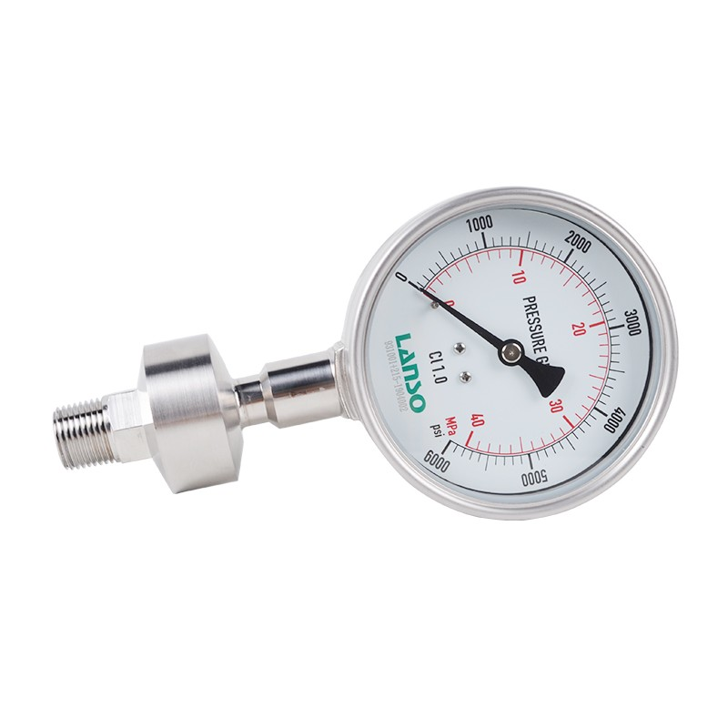B32.ST+DS34 Flange Diaphragm Pressure Gauge – Threaded Connection